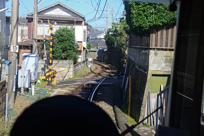 DSC_3695-2.jpg