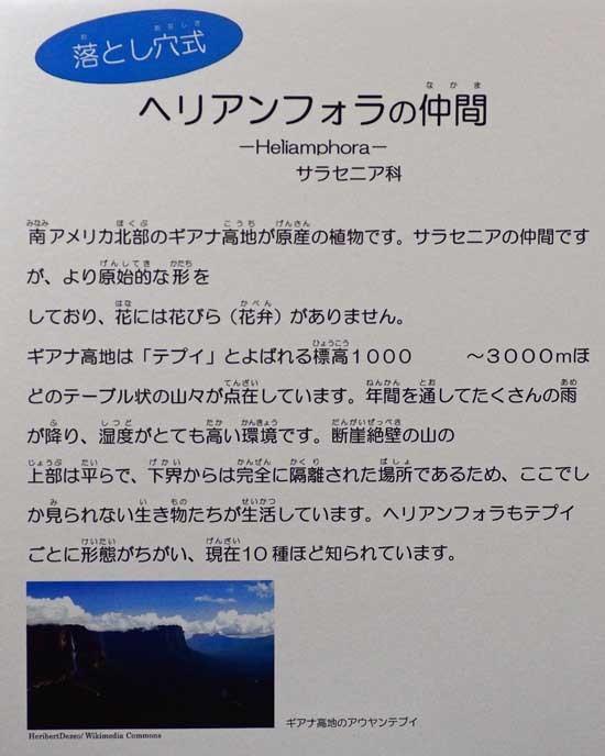 DSC_8637-2.jpg