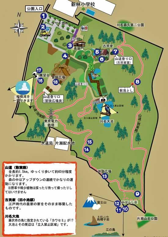 新林公園-23.jpg